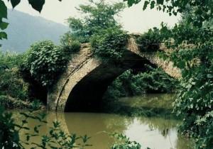پل قدیمی پارک جنگلی